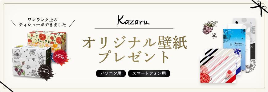 img_campaign_kazaru