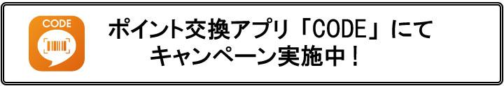 news_code_campaign_2021_logo1