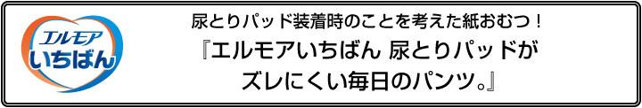 news_mainiti_logo1